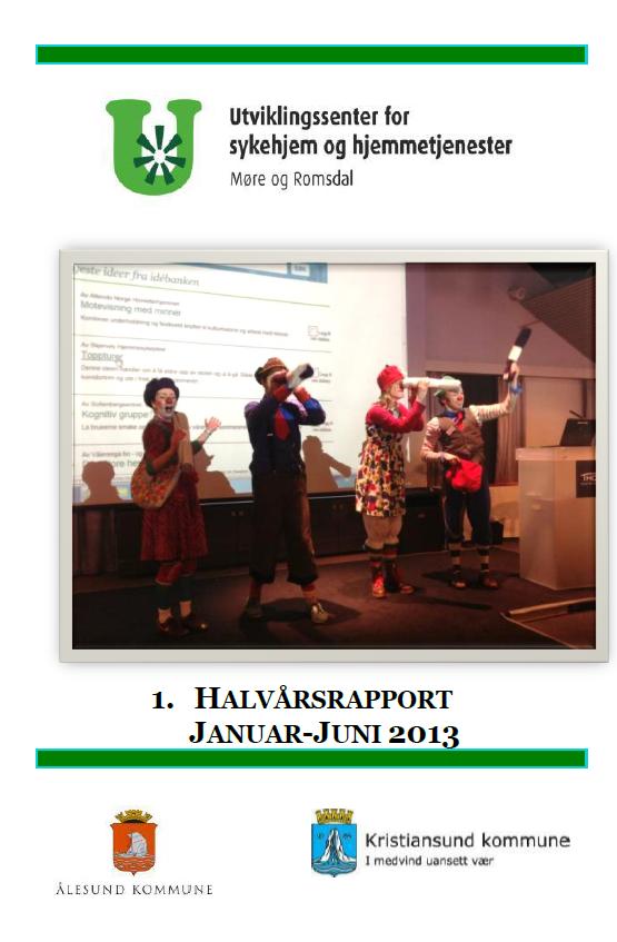 Framside halvårdrapport 2013