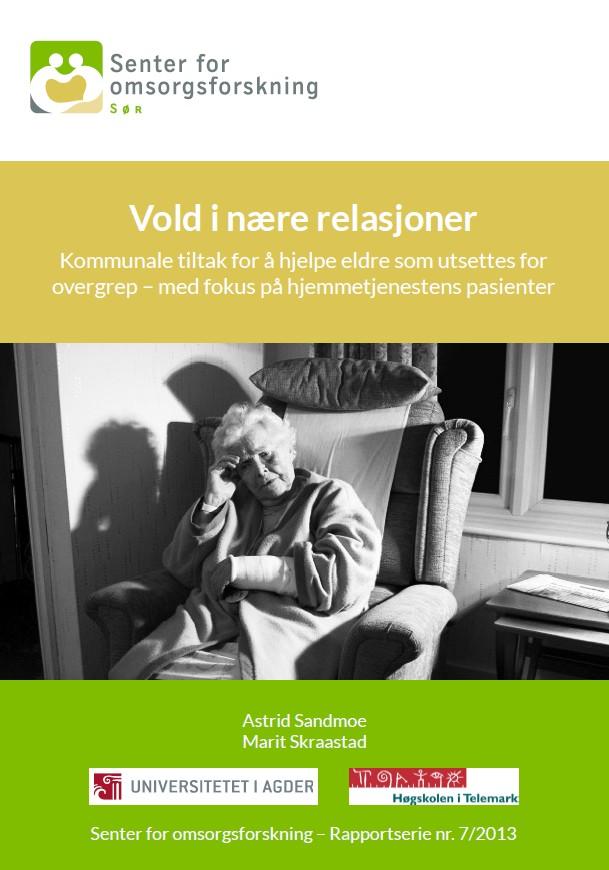 Forside rapport vold i nære relasjoner